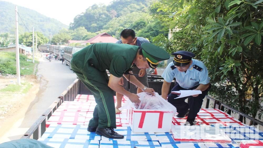 Xuất khẩu hơn 60 nghìn tấn vải thiều Bắc Giang sang Trung Quốc